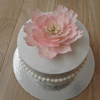 Wedding gift cake
