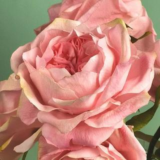 Bouquet of David Austin Roses, wafer paper  - Cake by Iliana Petrova