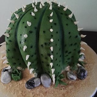 cactus cake - Cake by Federica Sampò
