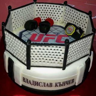 Cake Boxing ring