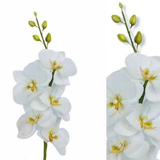 Orchidées wafer paper