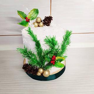 Winter cake - Cake by Tortalie