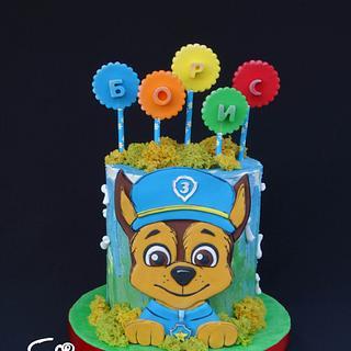 PAW patrol cake - Cake by Diana