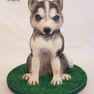 Husky pup - Pawfectly Dog-licious