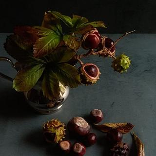 Sugar conkers (buckeyes)) with foliage