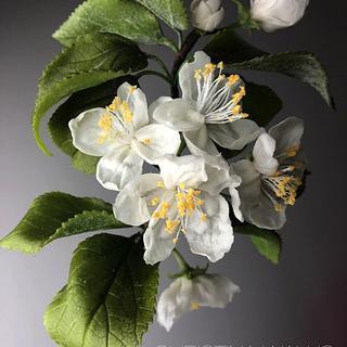 Apple Blossom Flower in Cold Porcelain