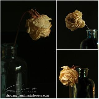 Faded Rose Flower ( Made with FR Veiner )