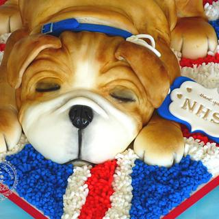 Sweet puppy cake NHS