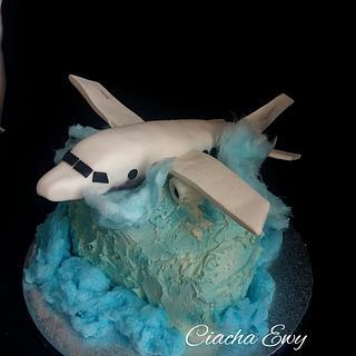 Passenger plane  - Cake by Ewa