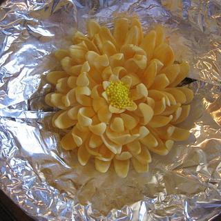Gumpaste Chrysanthemum