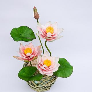 My water lily for the Magnificent Bangladesh - An International Cake Art Collaboration - Cake by Benny's cakes