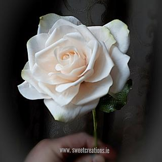 Clermont Sugar Roses