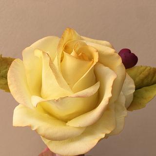 Yellow Rose - Cake by Mariano Camba
