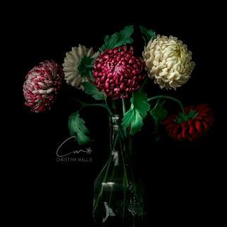 Chrysanthemum Flower Arrangement in Cold Porcelain
