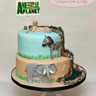 Animal Planet - Cake by Centerpiece Cakes By Steph