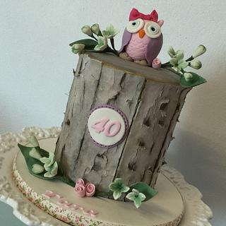 Owl cake  - Cake by Shirley Jones