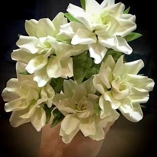 Sugar Gardenias