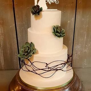 Shane and Melissa - Succulent Wedding Cake