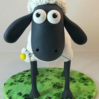 Daisy Sheep