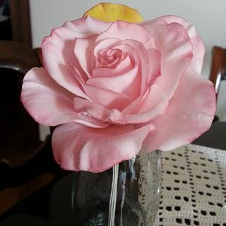 Pink Rose - Cake by Federica Mosella