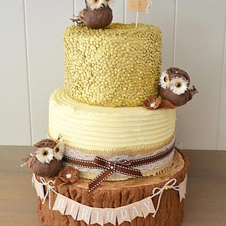 Rustic Owl and log cake