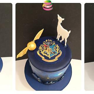 Harry Potter - Cake by Ruth - Gatoandcake