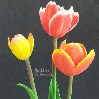 Sugar tulips