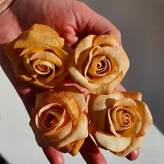 My first sugar roses - Cake by Judit
