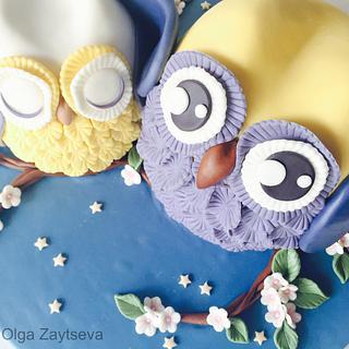 Baby shower Owl cake.