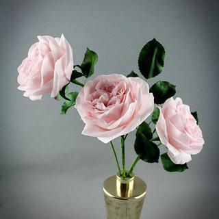 O'hara roses
