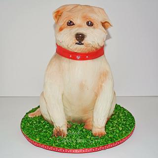3D sculpted dog cake! - Cake by Seema Acharya