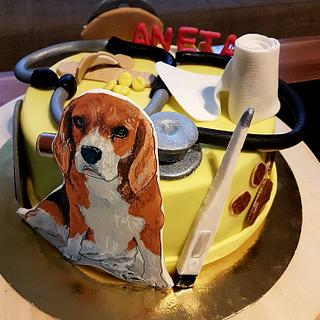 Veterinary cake