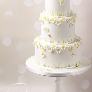 Daisies and ladybird cake