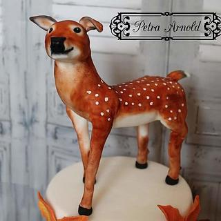 sweet autumn collaboration - Cake by Petra