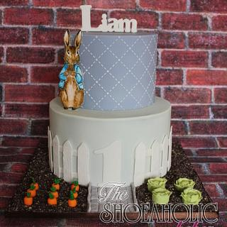 Peter Rabbit cake - Cake by The Shoeaholic Baker