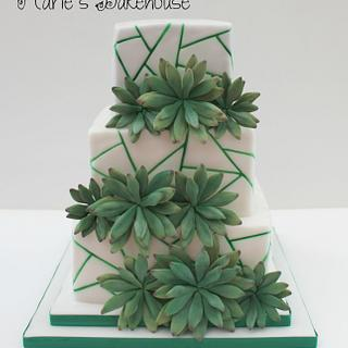 Succulent geometric wedding cake