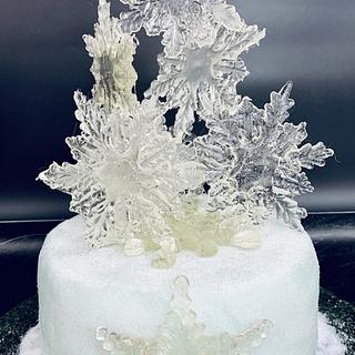 Christmas cake - Cake by alek0
