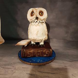 Hedwig moving owl cake