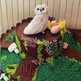 Owl tree cake
