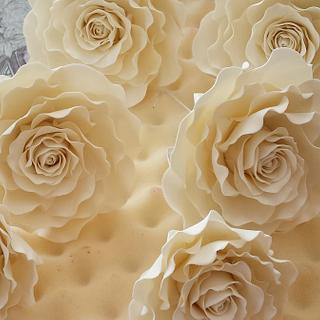 Ivory roses xx