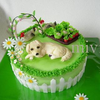 Cake garden with a dog