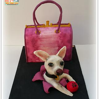 Guess handbag cake and chihuahua dog