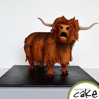 "Highland Cow or ""Heelin Coo"""