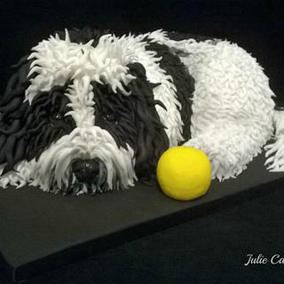 Dusty the Dog - Cake by Julie Cain