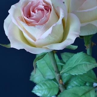 Sweet elegance sugar roses
