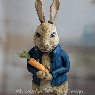 Peter rabbit cake 🐰
