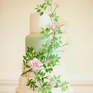 Jasmine Rose wedding cake