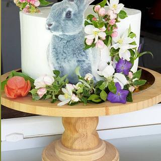 Rabitt cake