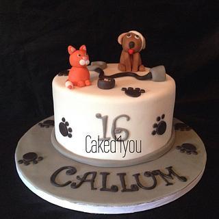 vet themed cake