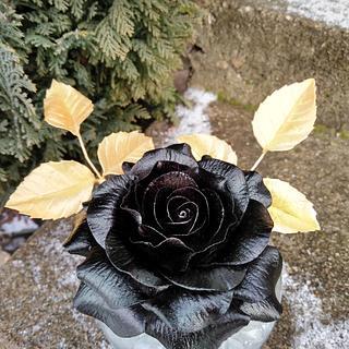 Black rose 🌹